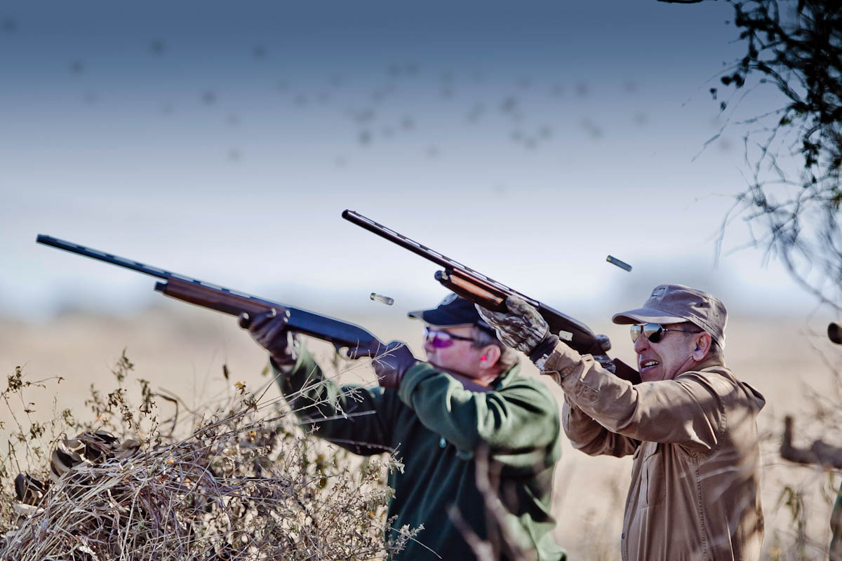 Argentina-Dove-Hunting-2-Shooters