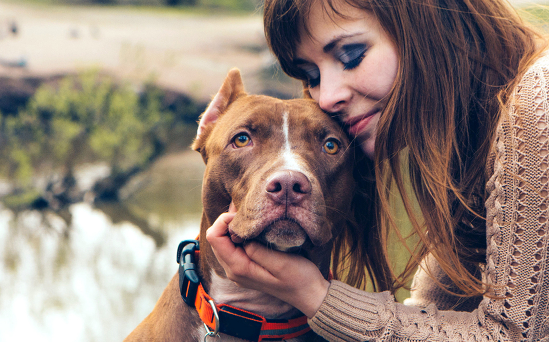 Woman with dog nature near lake; Shutterstock ID 277149446; PO: dog-owner-loyalty-stock-today-tease-150616; Client: TODAY Digital